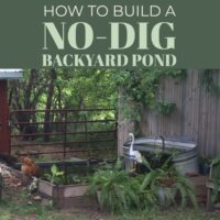 Instructions for building a backyard pond with no kit and no digging required