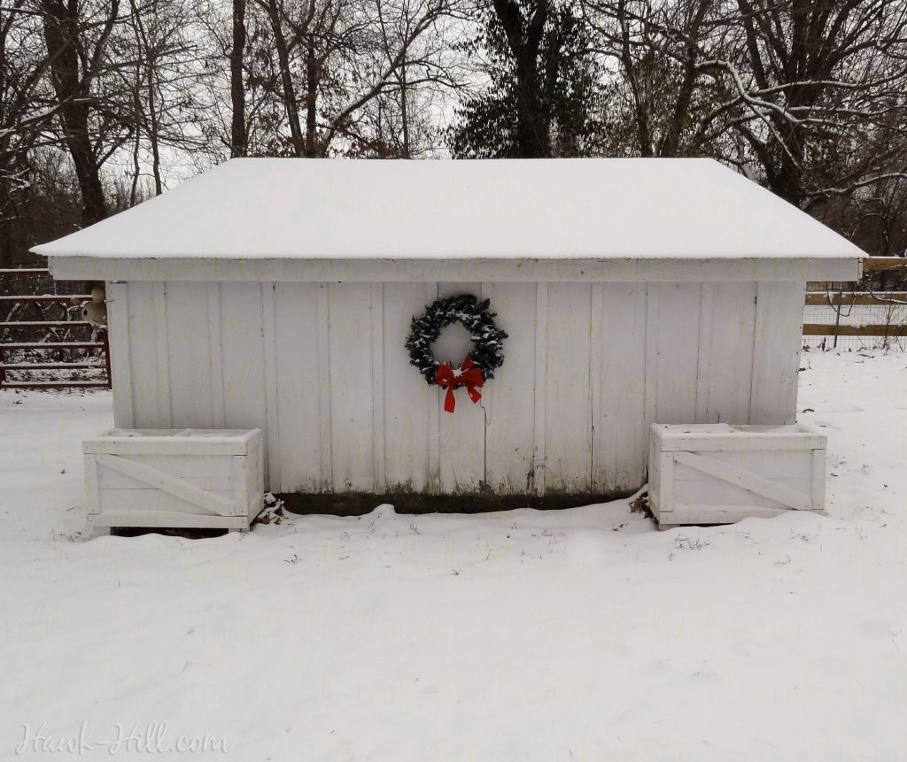 Chicken coop in the sno decorated for Christmas