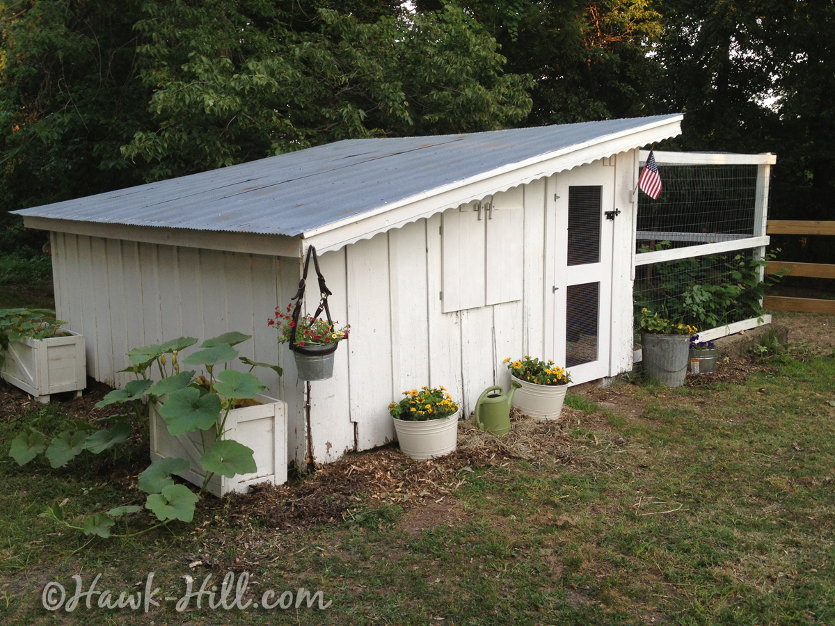 White Old Fashion Chicken Coop with Slant Roof - Hawk Hill