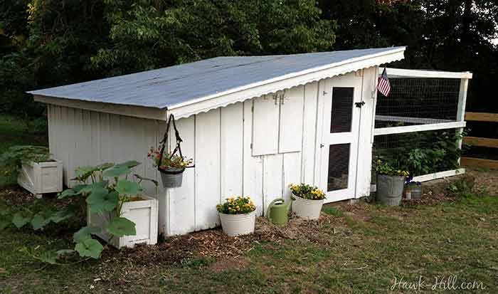 Building a shed on a hill - Renovated Antique Chicken Coop With Slant Roof Hawk Hill
