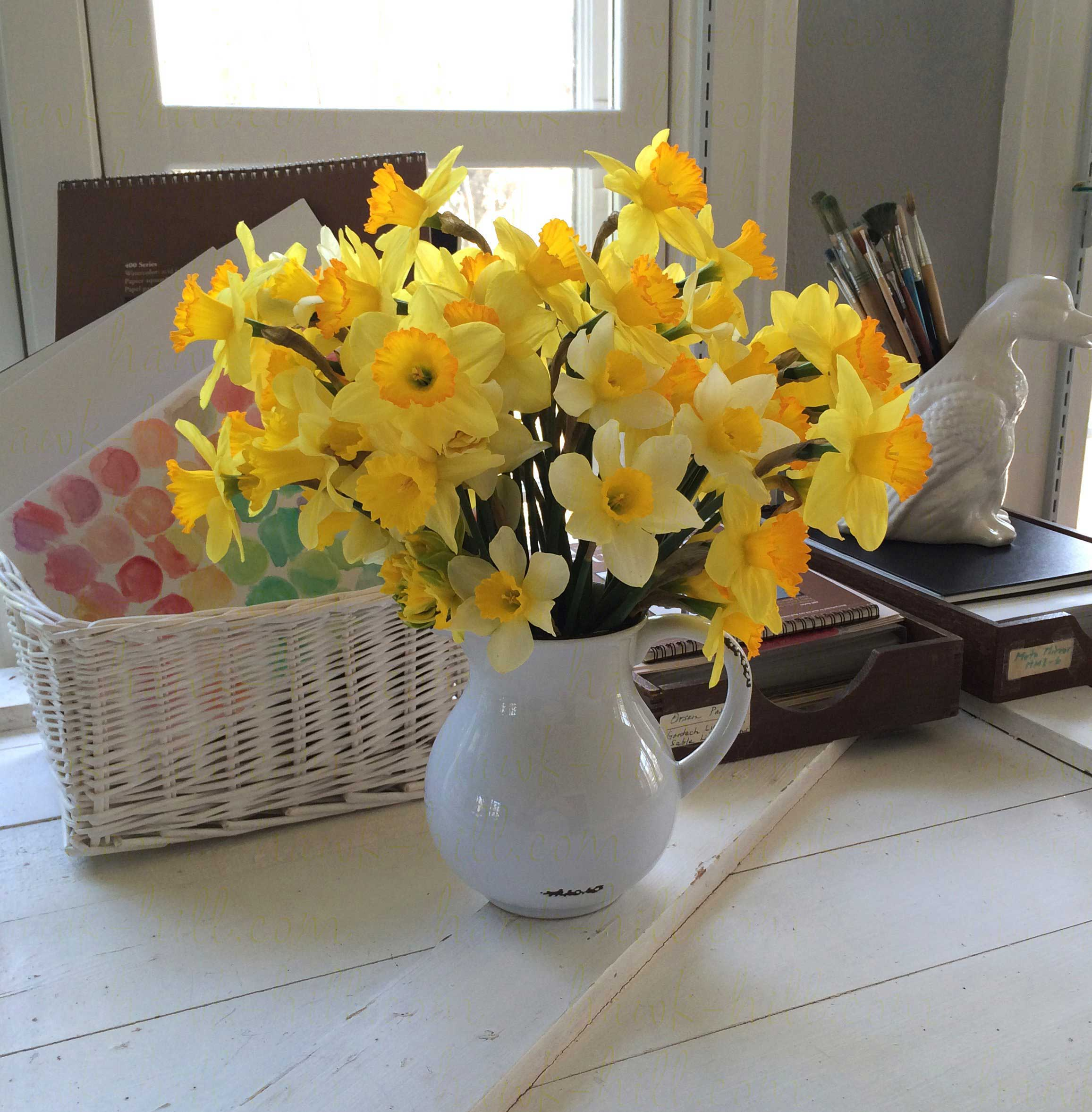 King Alfred Daffodils in a bouquet of cut flowers.