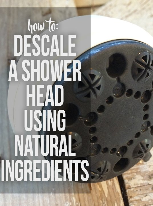 clean and descale a shower head with citric acid hawk hill. Black Bedroom Furniture Sets. Home Design Ideas