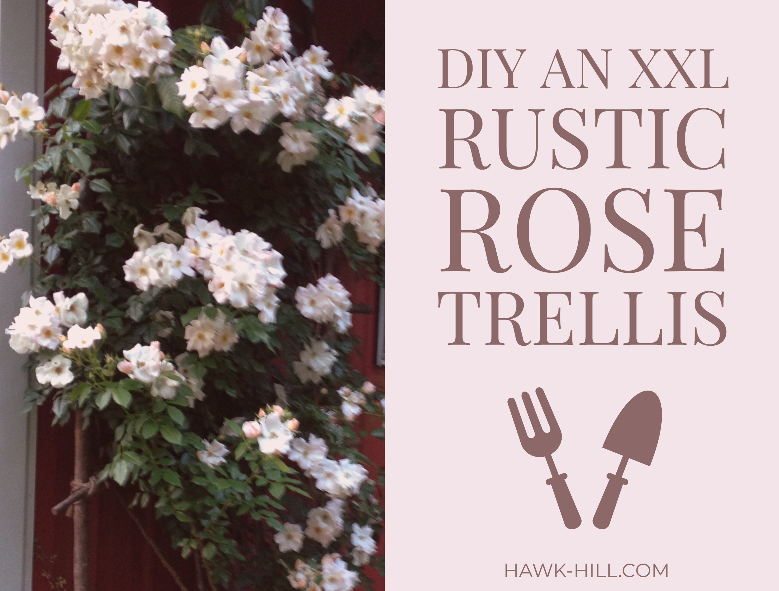 How to make a huge rustic DIY rose trellis using free materials