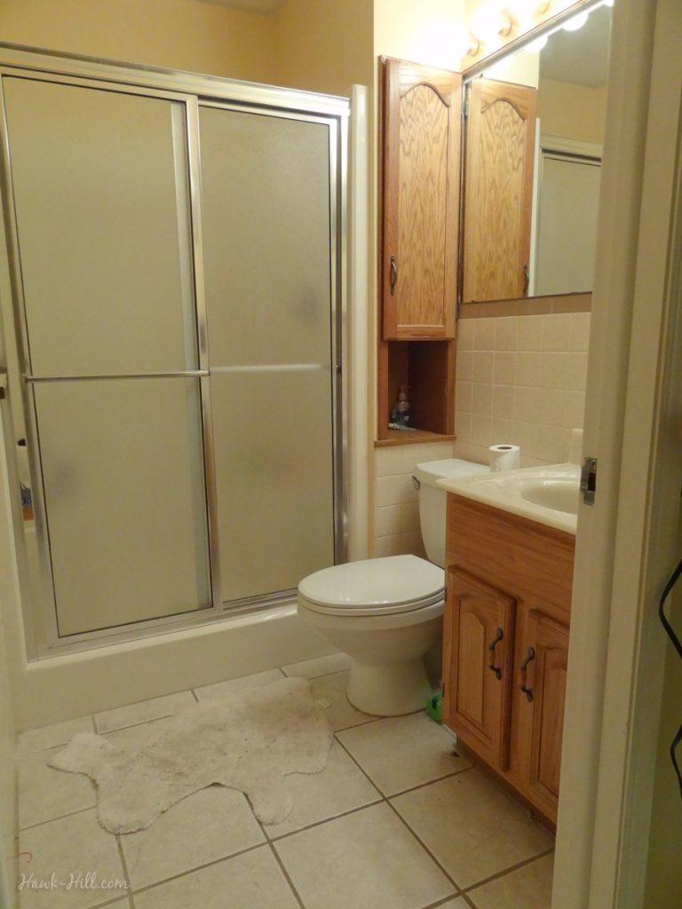 $300 bathroom remodel - before