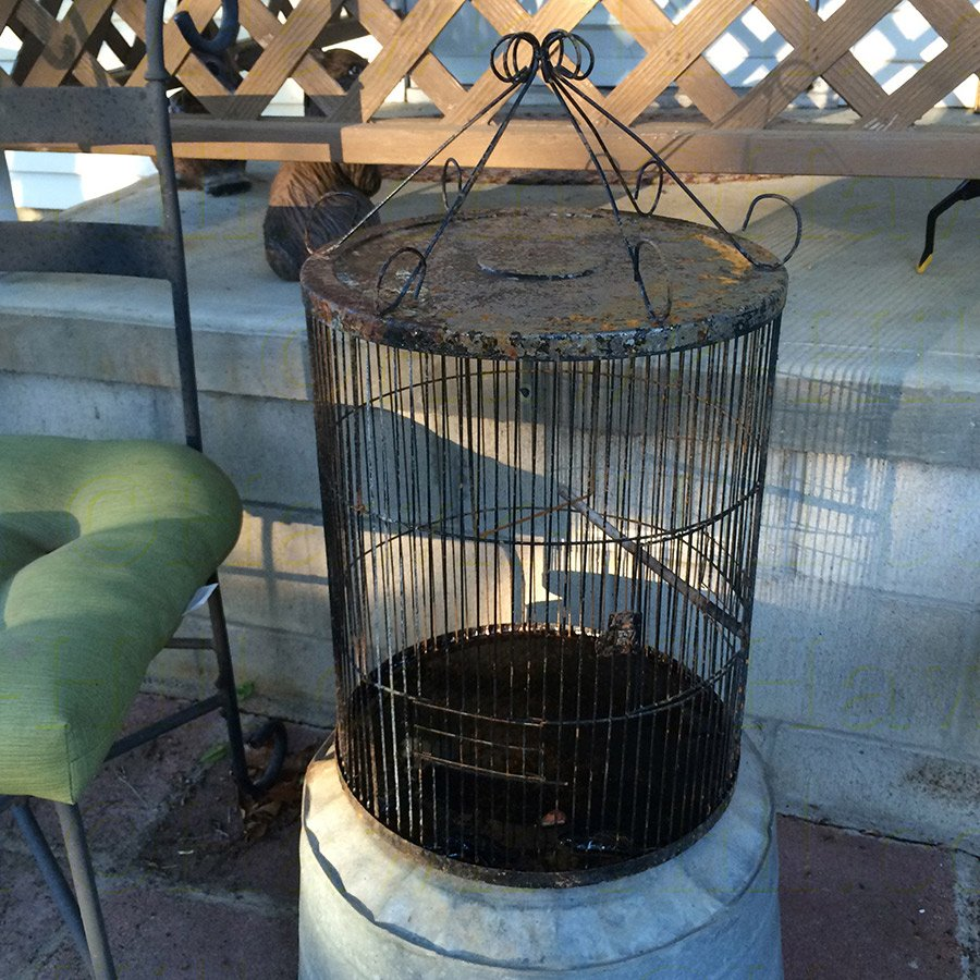 My vintage birdcage about to be turned into a hangable flower pot