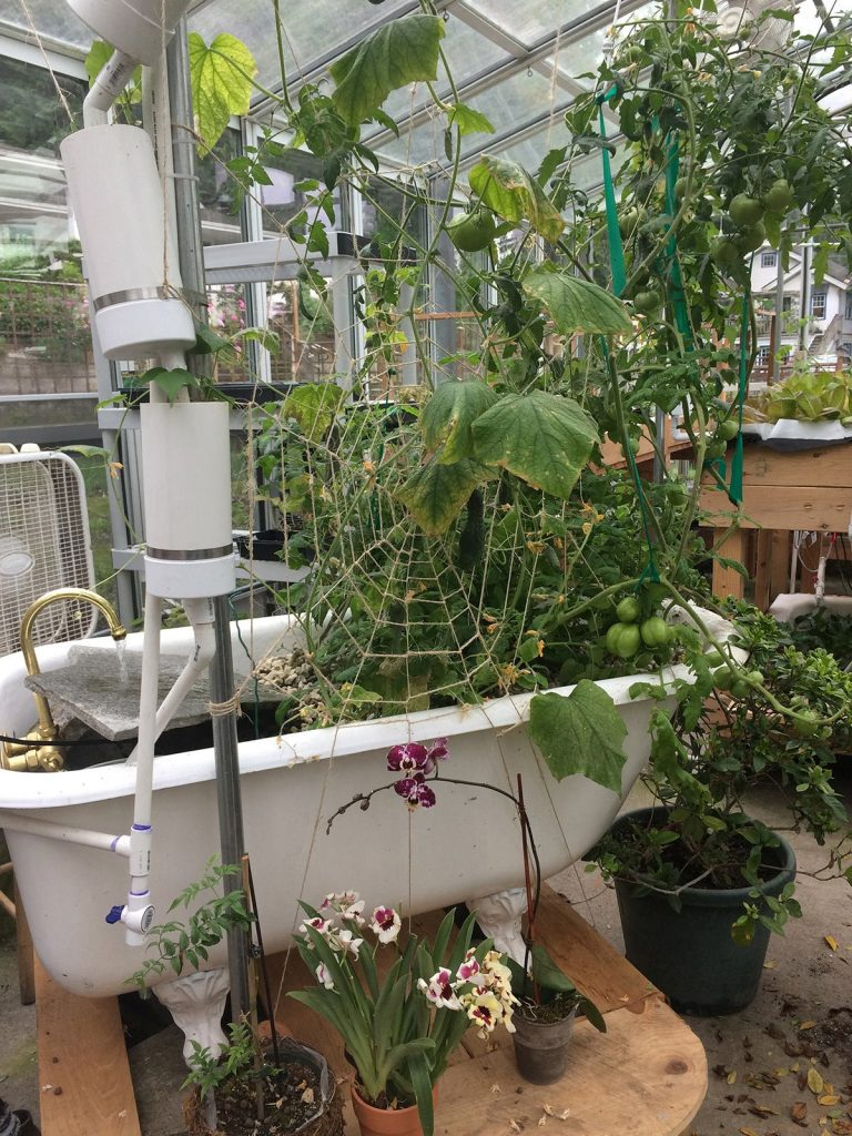 This whimsical garden in a greenhouse features a cast iron tub and a hand tied spider web trellis made from string.