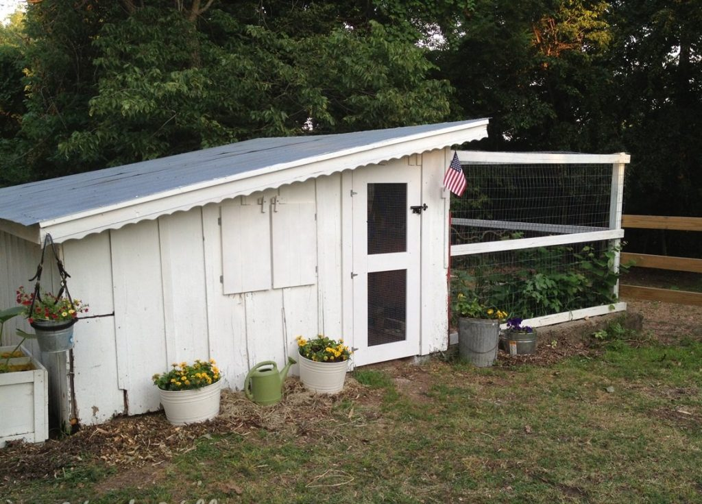 simple maintenance for old chicken coops