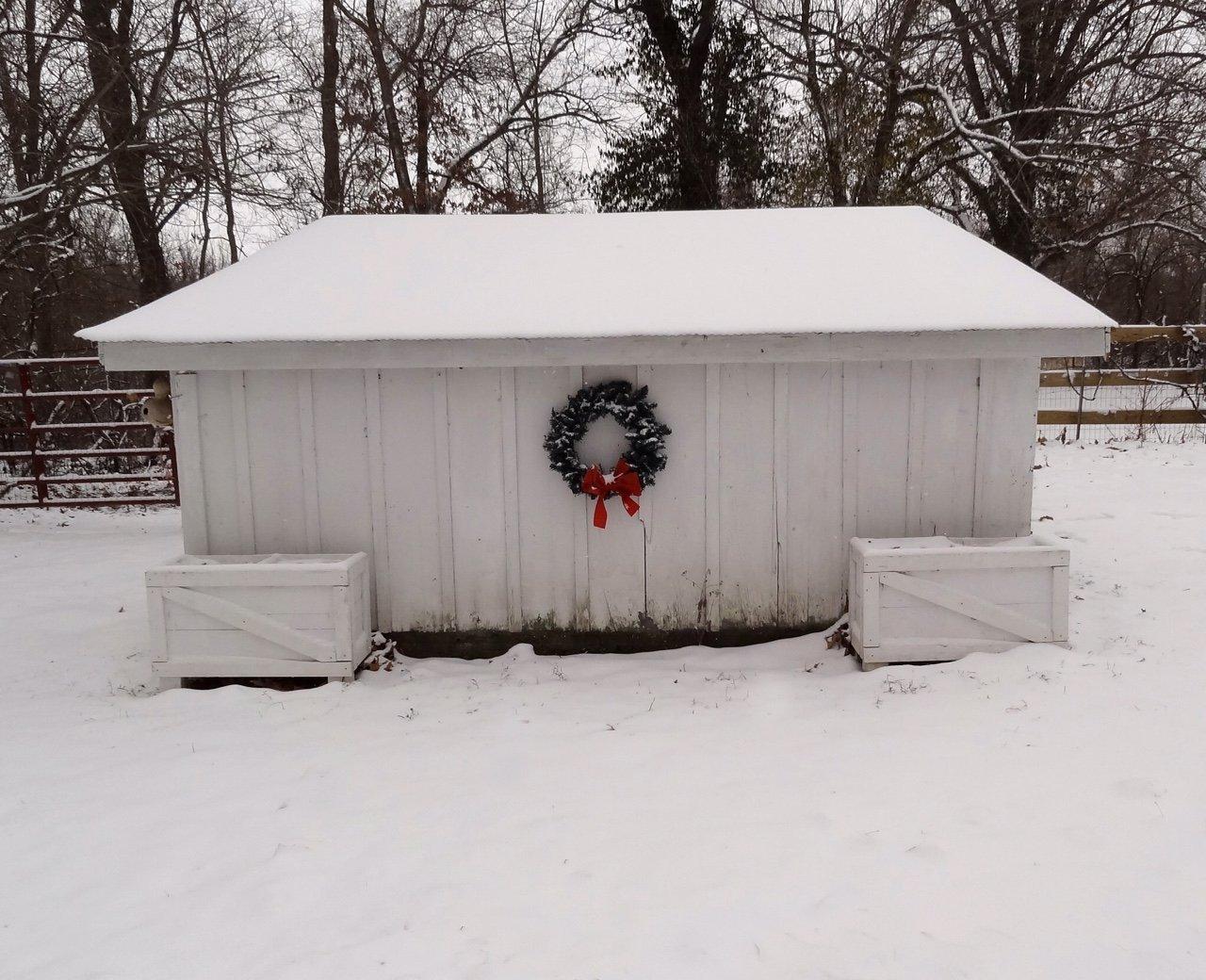 My chicken coop in the depth of winter snow