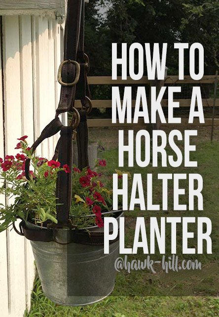 simple instructions for creating and weatherproofing this horse halter hanging planter