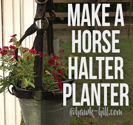 how to make a horse halter planter