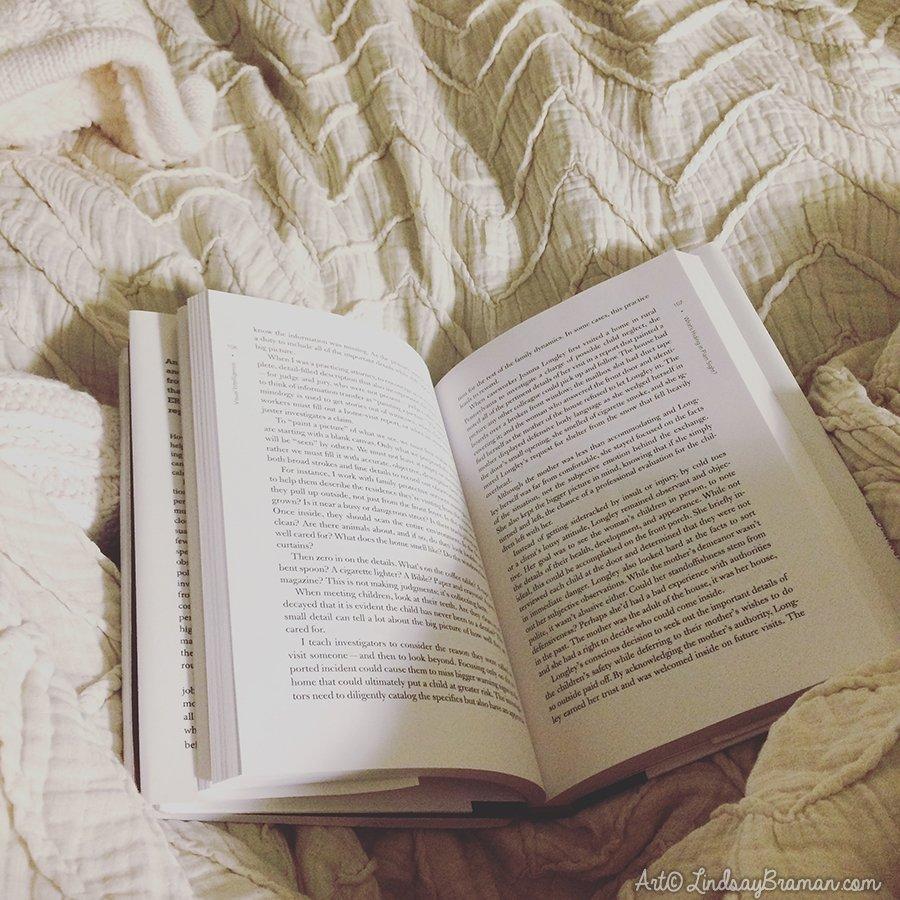 book_anthropologie_chevron_linen