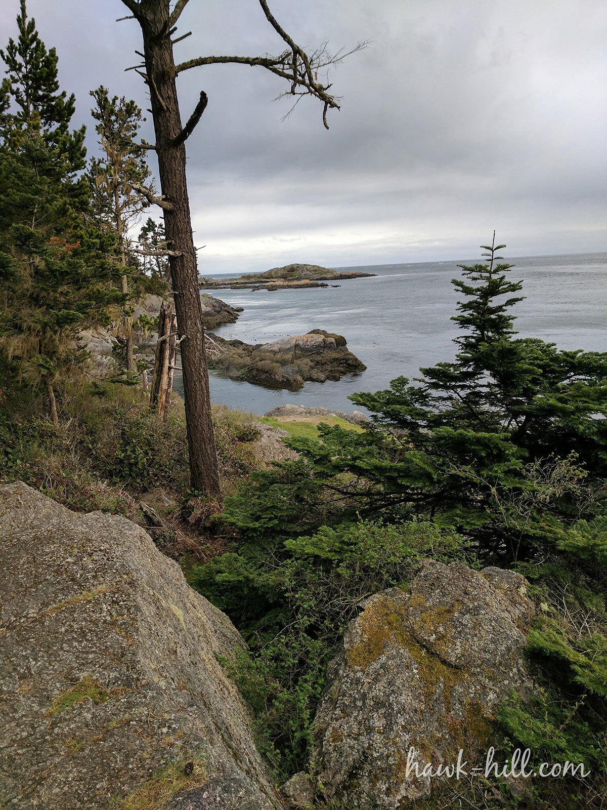 Lopez Island Overlook