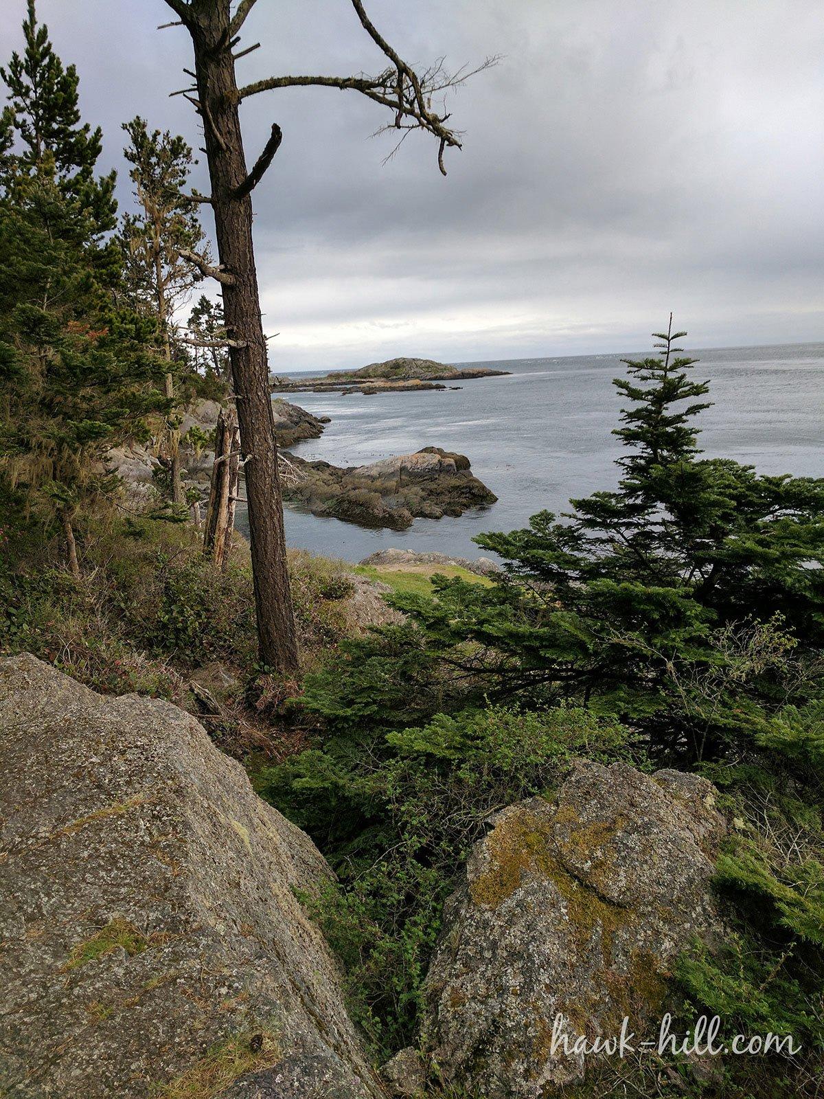 Lopez Island Overlook