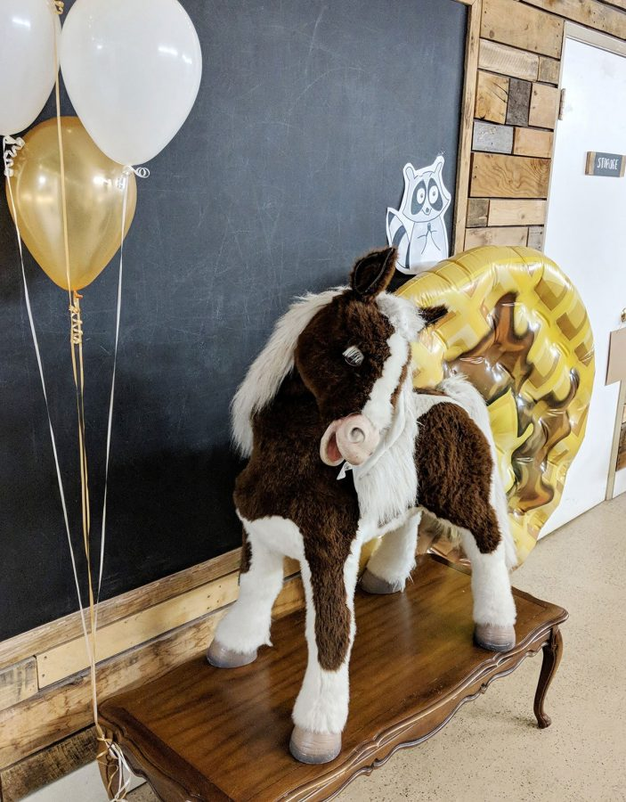 This Lil Sebastian was the star of the party