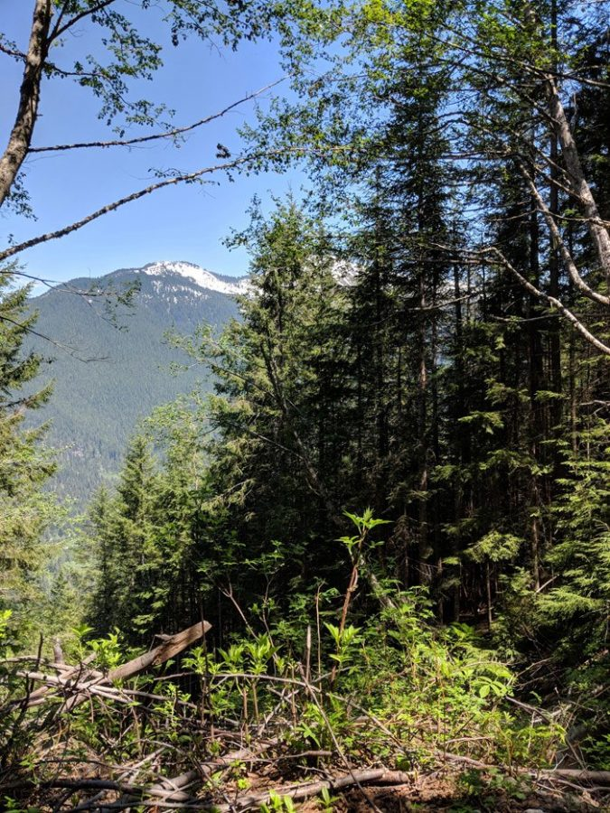 The view from Hansen Creek trail