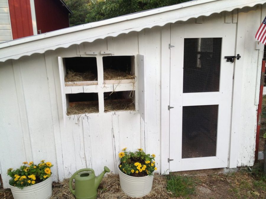 adding nesting boxes to 80 year old chicken coop