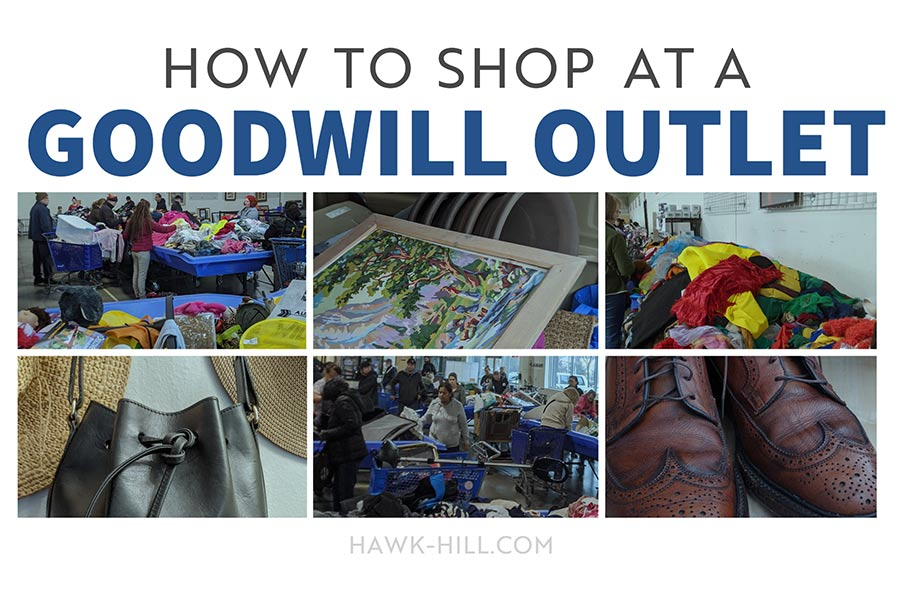 How to shop at the goodwill bins like a pro to get the best deals and have the most fun