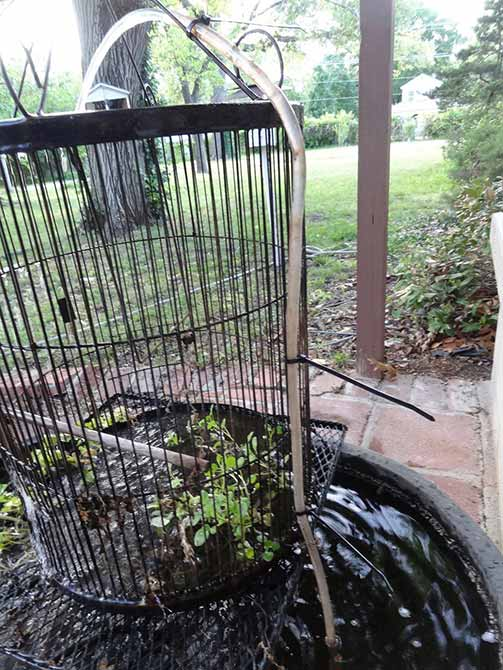 Turning a birdcage into a fountain using plastic tubing and zip ties
