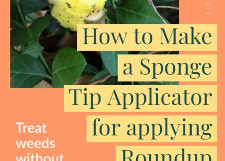 How to apply roundup directly to target plants without risking overspray or runoff
