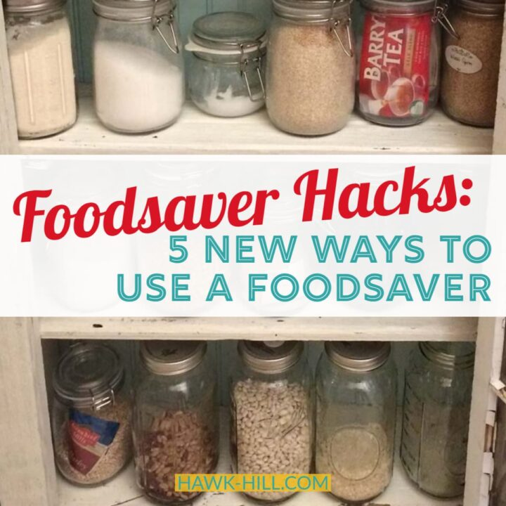Five new ways to use a food saver for creative kitchen management
