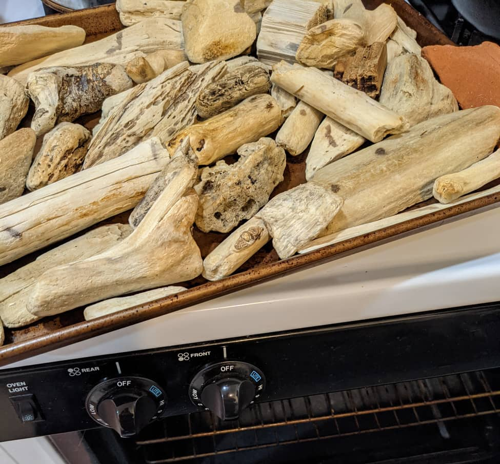 Driftwood after baking and bleaching