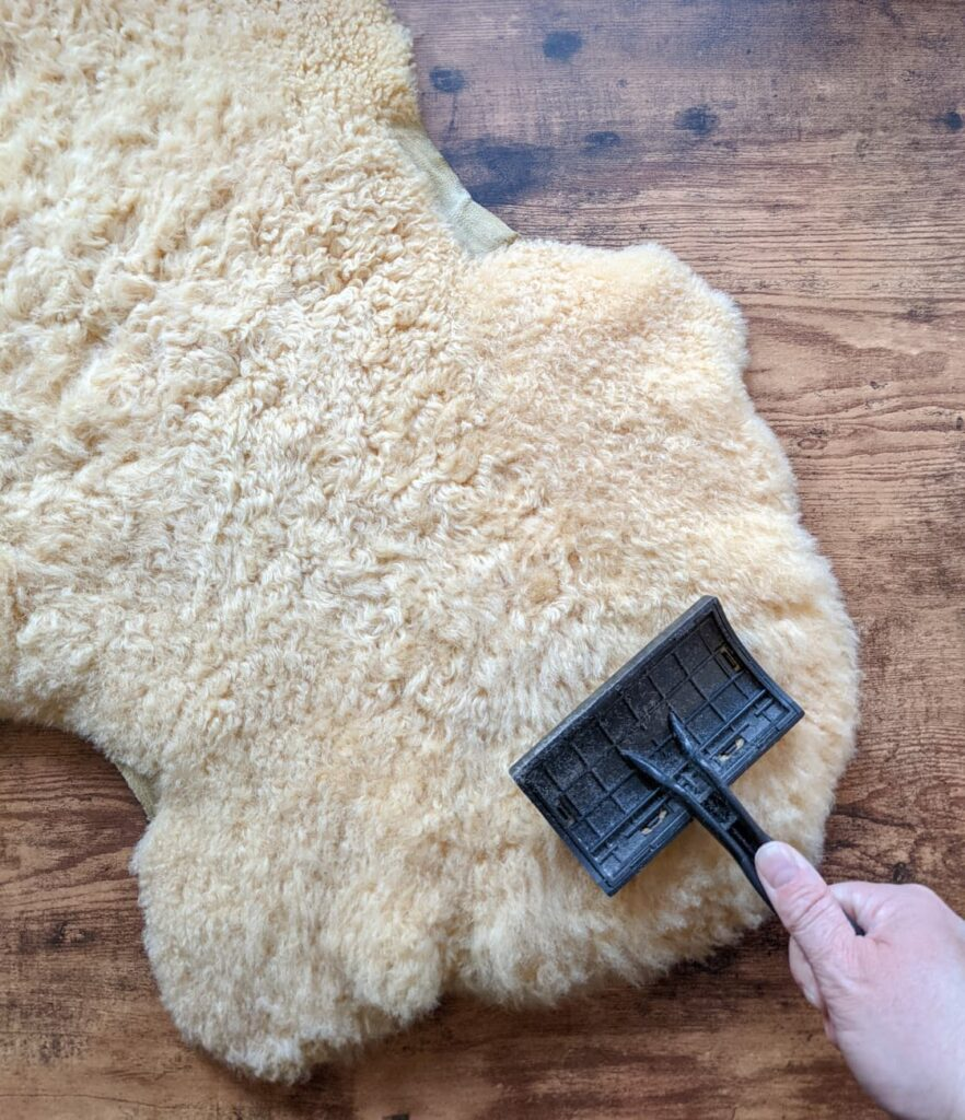 Combing a shepskin rug to clean, soften, and restore the soft fluffy pile