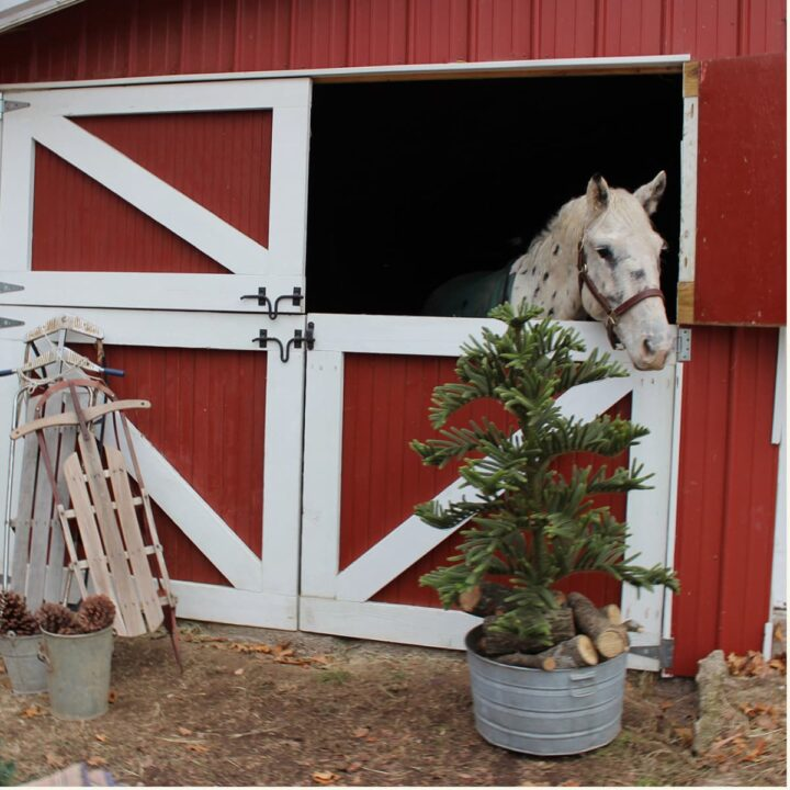 Decorating for christmas with an equestrian and horse inspired holiday style