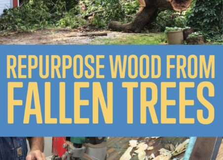how to repurpose wood from a sentimental tree- so the fallen tree can remain a part of family memory
