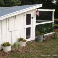 Keeping modern chickens in a 100 year old vintage coop - things I love and updates I've added