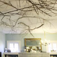 tree branches on ceiling