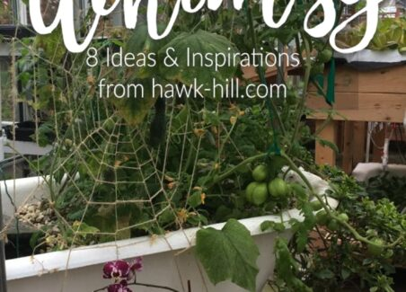 how to create a garden of whimsy