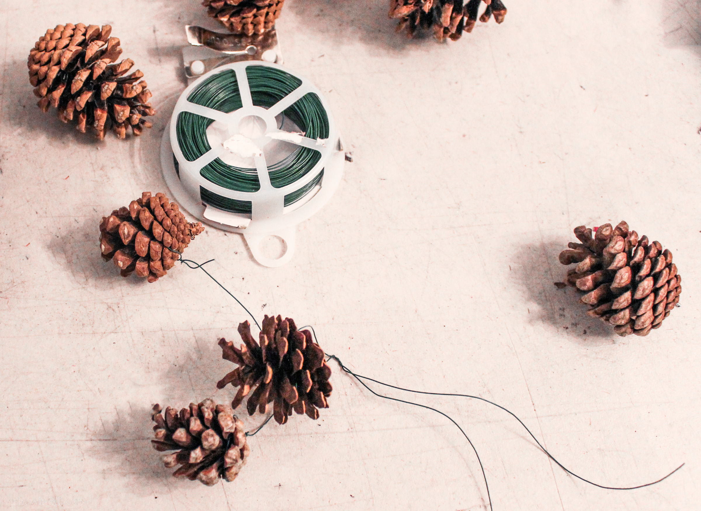 Pinecones with wire.