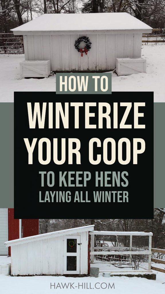 Winterizing your chicken coop