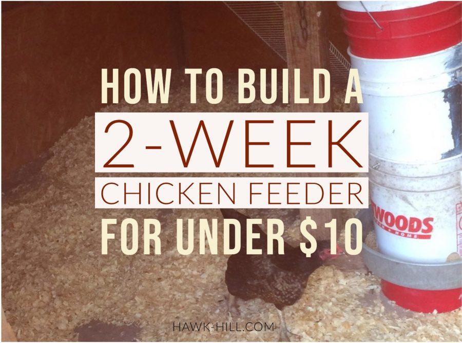 build a chicken feeder using a 5 gallon bucket