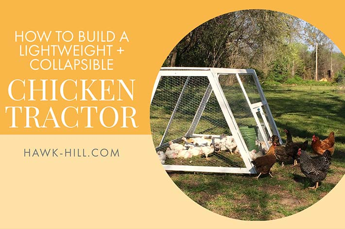 Download my free woodworking plans for this collapsible and portable chicken tractor