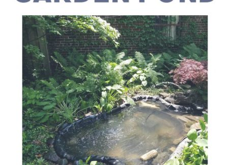 Installing a gravity drain in your pond takes about 15 minutes and makes pond clean-outs easy, fast, and energy efficient. Find detailed instructions and learn more about how to purchase an unobstructed drain type at hawk-hill.com.