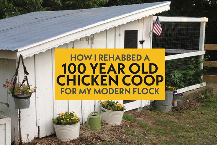 image of a rehabbed old chicken coop