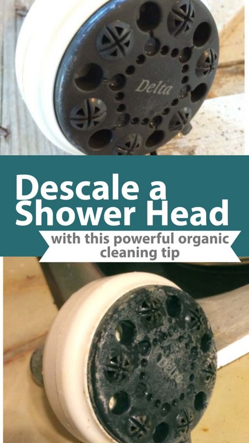 Recipe for descaling a shower head using natural ingredients