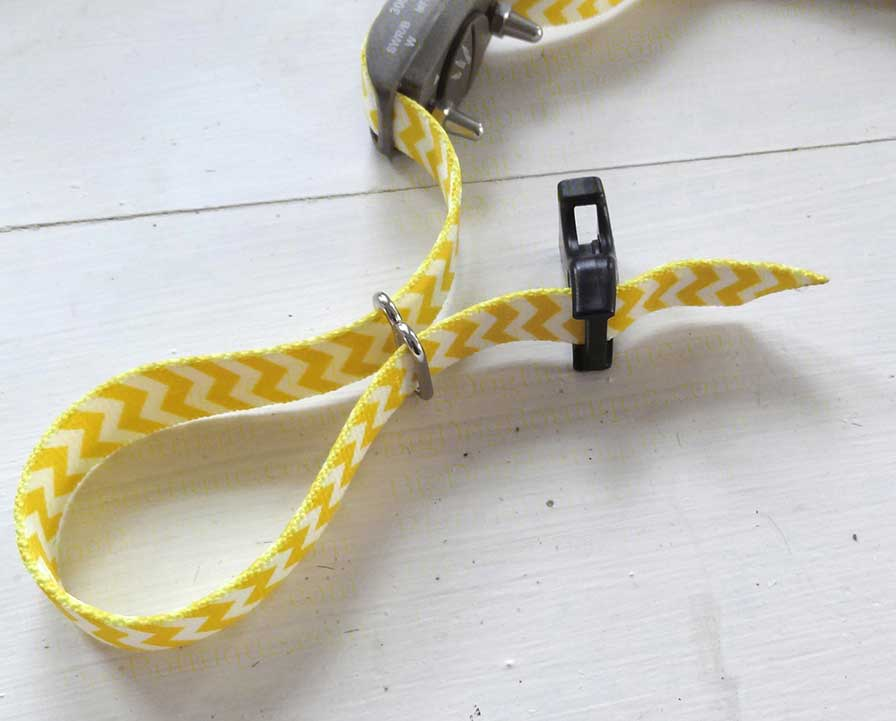 dog collar with a metal slide