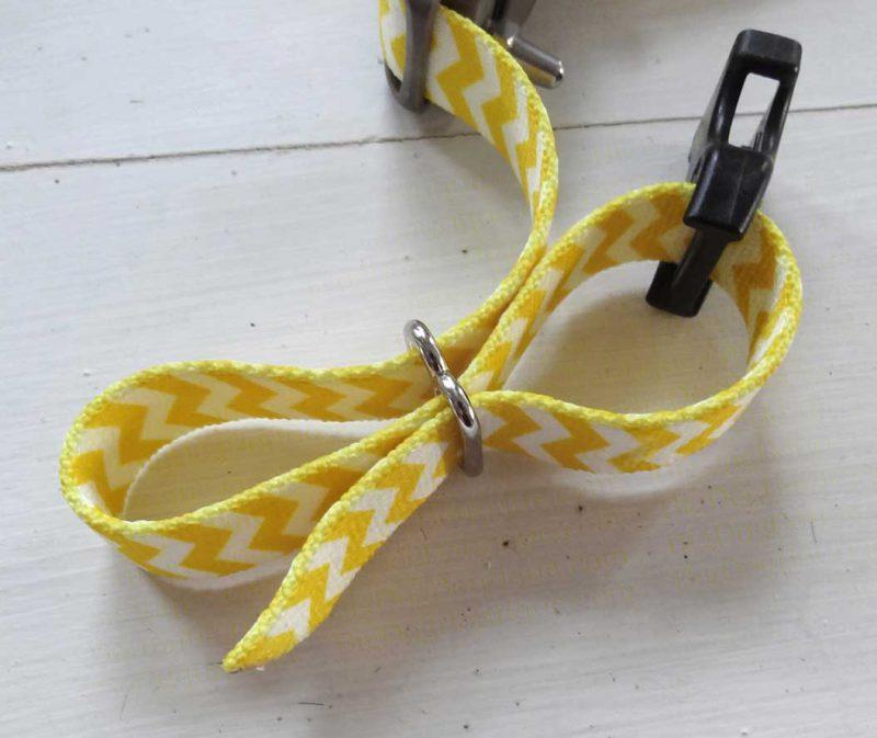 a dog collar and slide